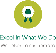 Excel in what we do