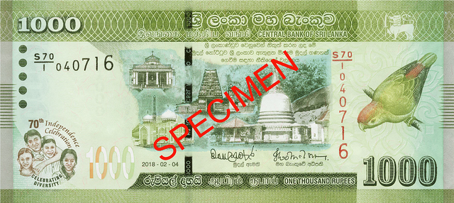 RS 1000 FRONT.png